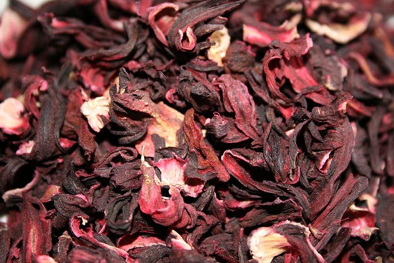 الكركديه الكركديه 800px-hibiscus_sabda