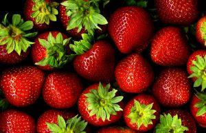 ثمار الفراولة (الفريز )